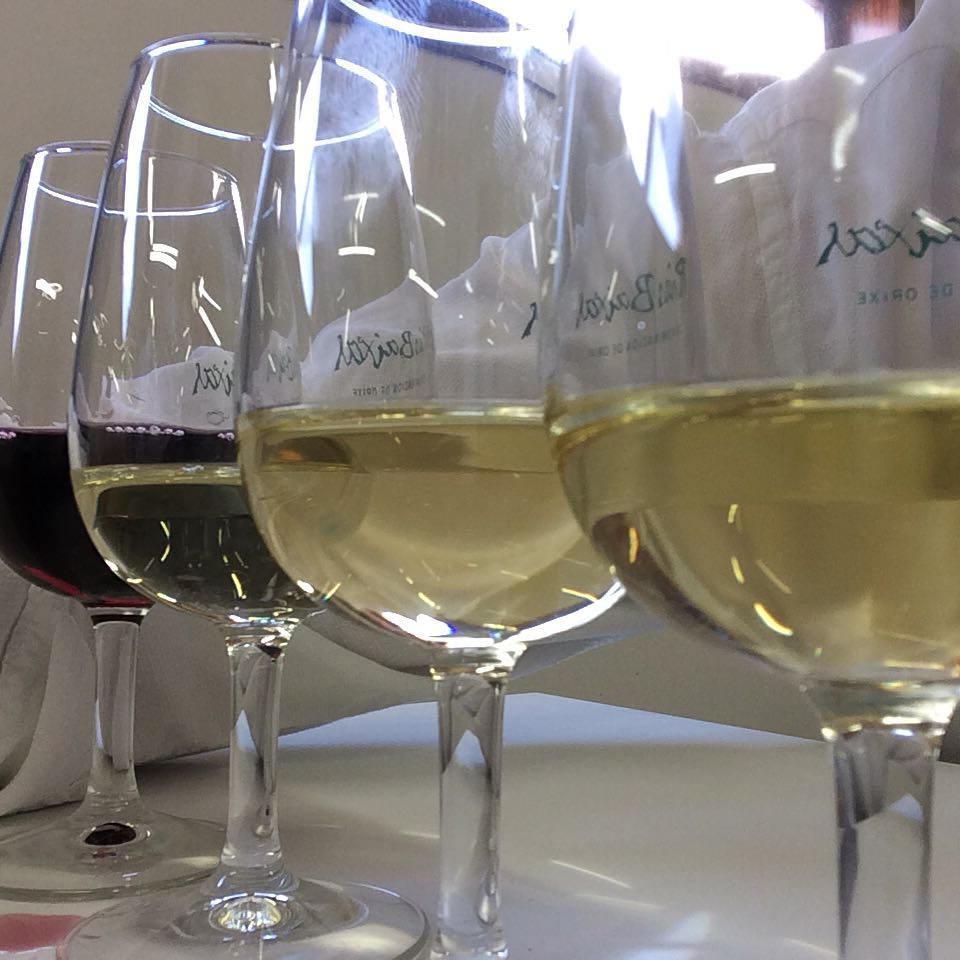 Copas de vino (Fiesta del Albariño)