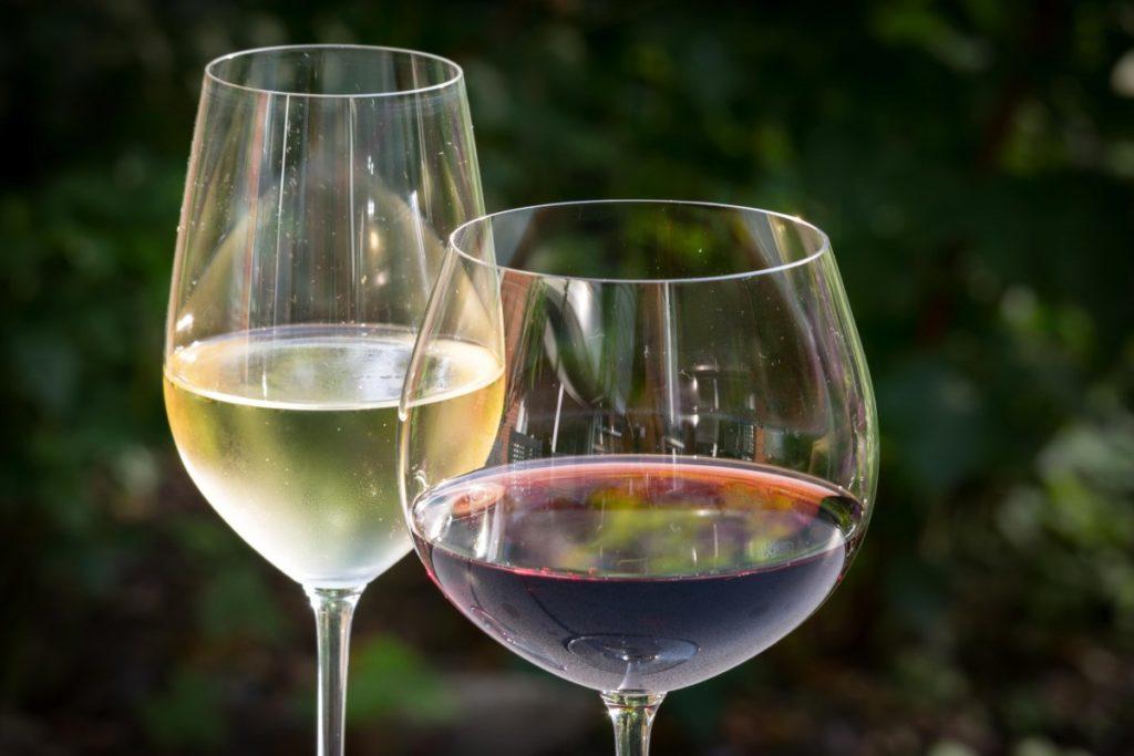 descubre los vinos gallegos