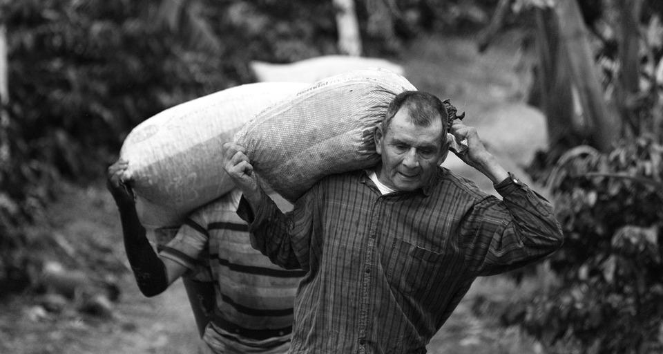 rurales/tradicionales